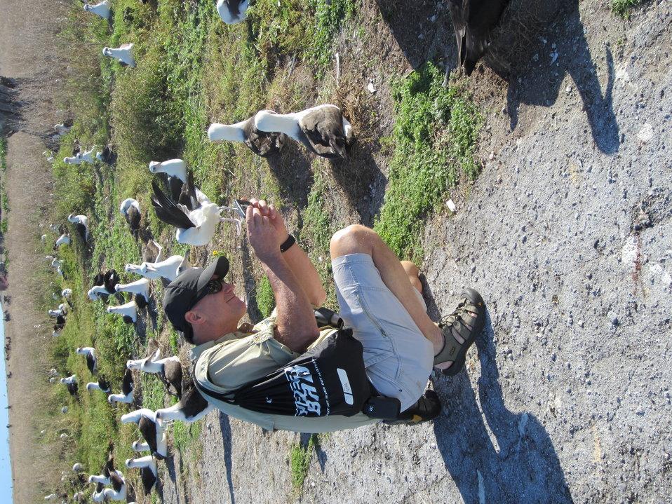 USFWS Director, Dan Ashe, Captures a photo of a Laysan Albatross