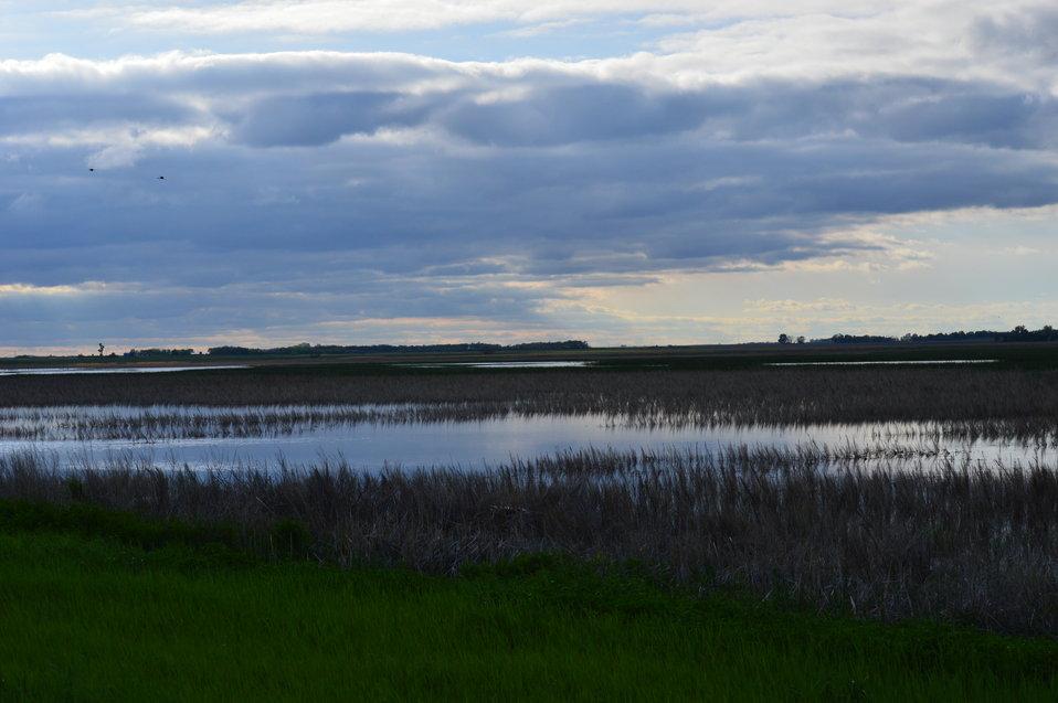 Dusk at Sand Lake NWR