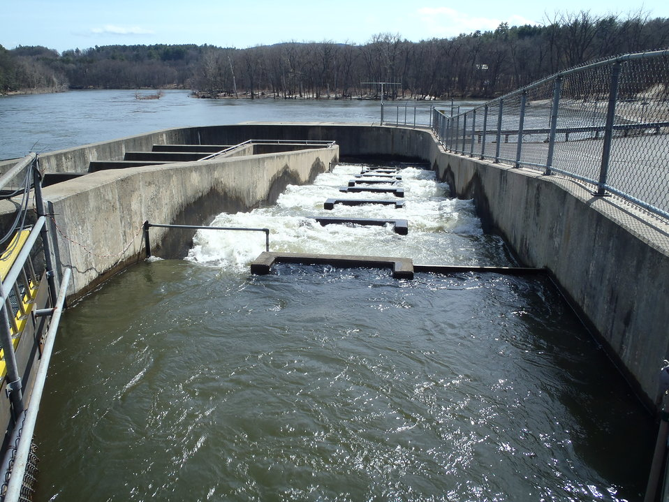 Ice Harbor fish ladder in VT 1