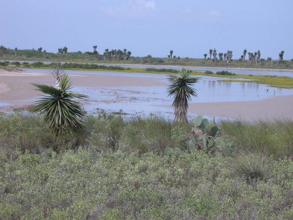 Laguna Atascosa NWR inlet