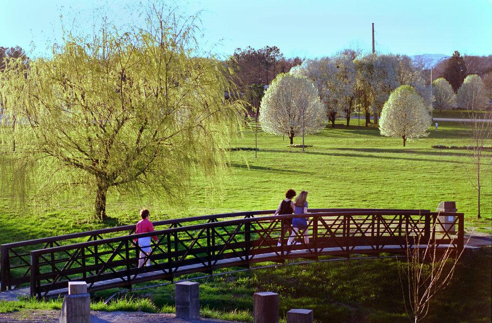 Bissell Park Oak Ridge
