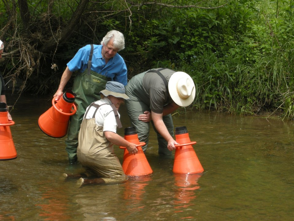 OSM Director Joseph Pizarchik Using a View Tube to Observe Mussels in Indian Creek