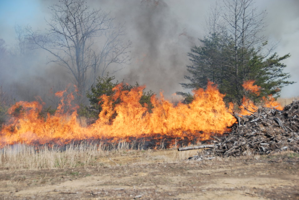 Patuxent Research Refuge Controlled Burn