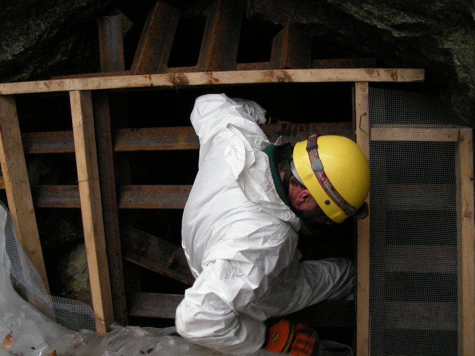 Biologist entering the mine