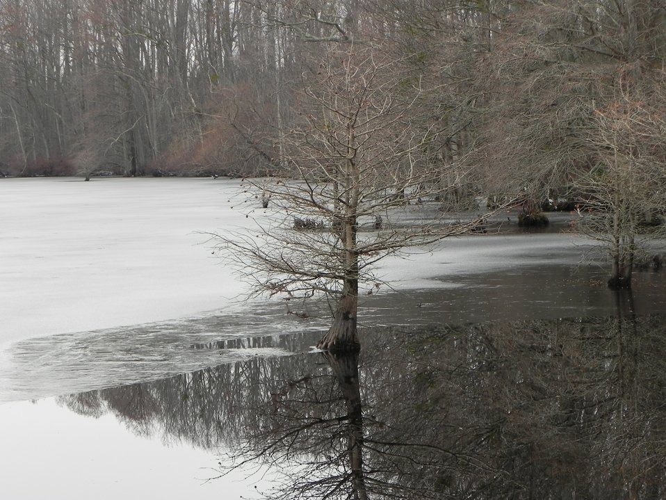 Frozen Lake Drummond