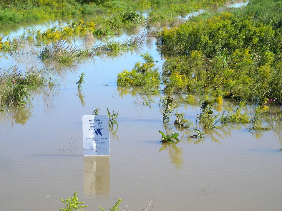 Flooding at WallKill River Refuge