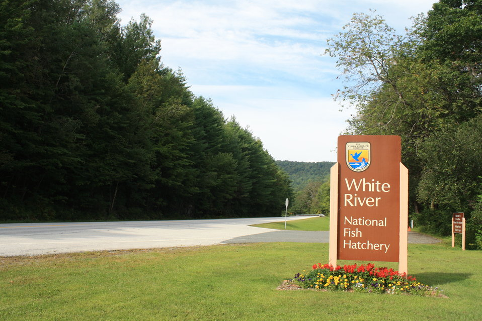 White River National Fish Hatchery entrance