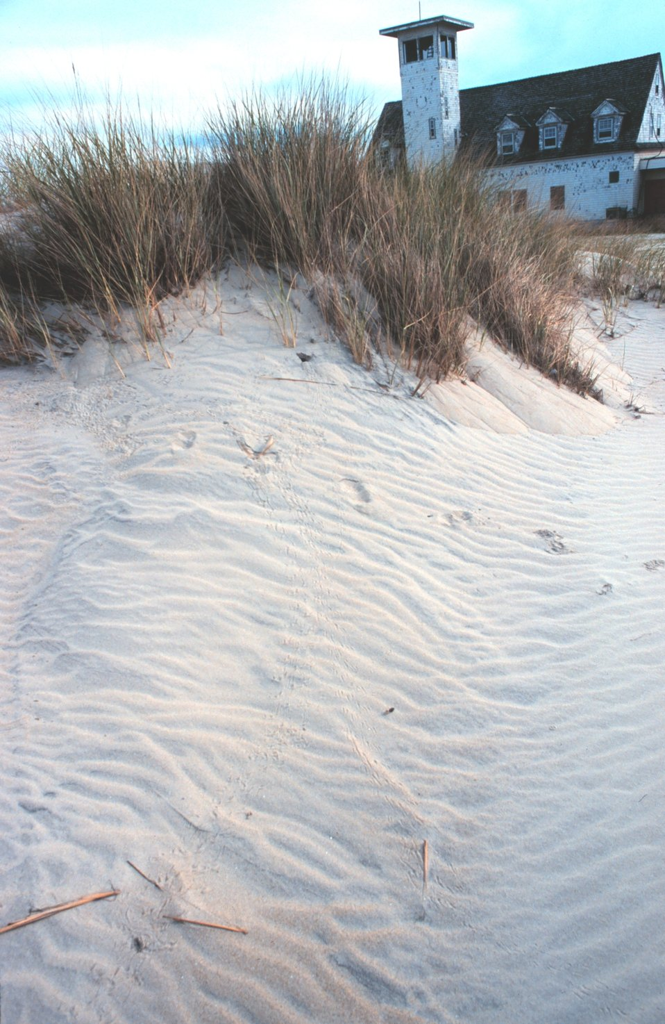 Wind-swept dunes near the abandoned Coast Guard Station