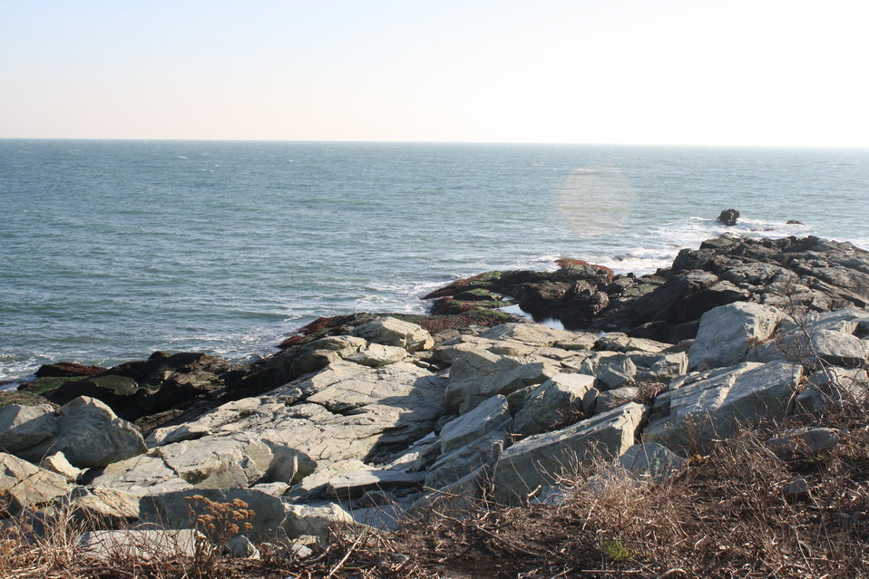 Viewing damage at Sachuest Point (RI)
