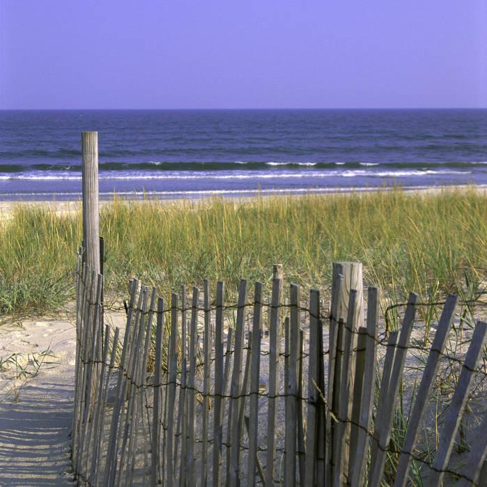 Beach at Chincoteague National Wildlife Refuge (VA)