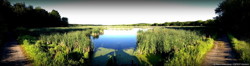 Lower Pool - Great Meadows NWR - a panoramic view