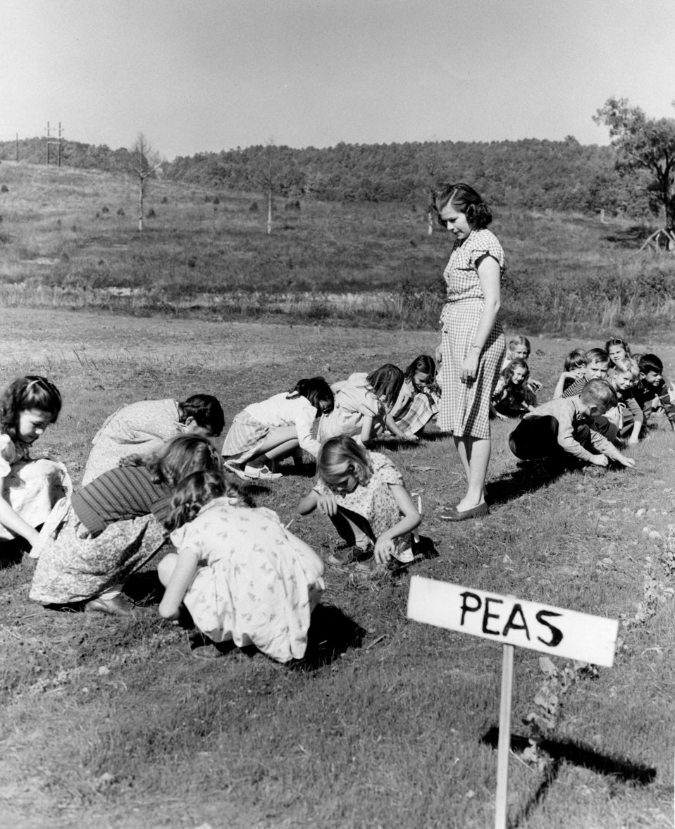 Gamble Valley School Garden Oak Ridge 1947