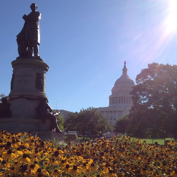 Beautiful July morning on Capitol grounds.