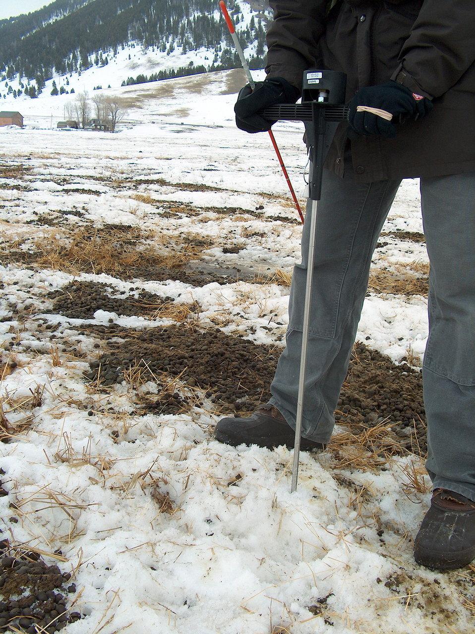 Collecting Environmental Data at the National Elk Refuge