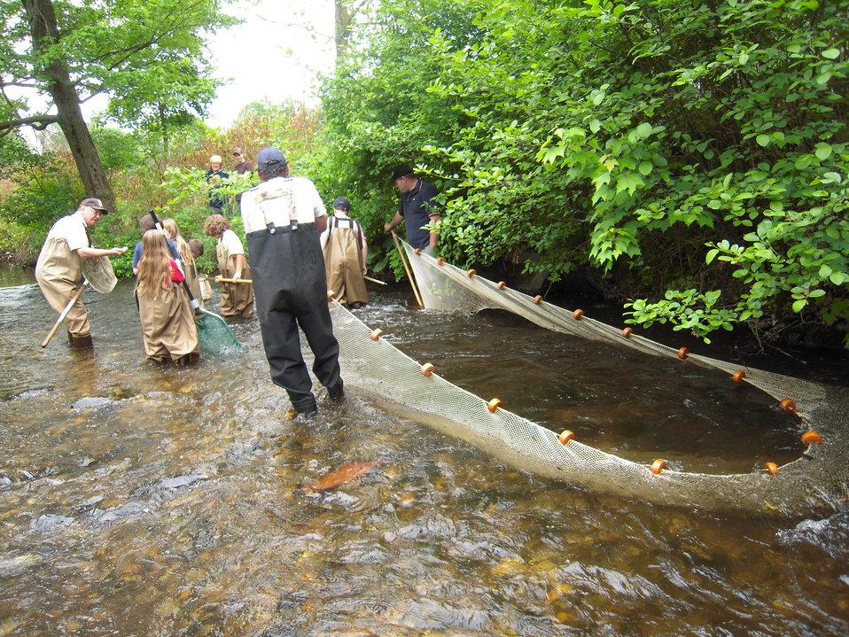 Large net set in water