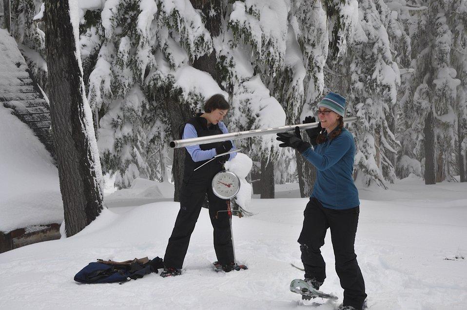 Snow Survey 2
