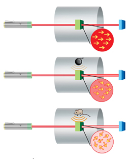 New NIST Mini-Sensor May Have Biomedical and Security Applications