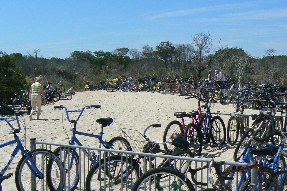 Bikes at Chincoteague National Wildlife Refuge