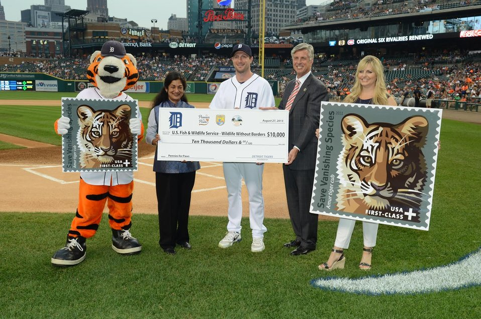 tigers-check-presentation