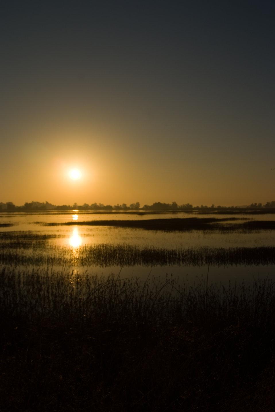 Sunset at Sacramento National Wildlife Refuge