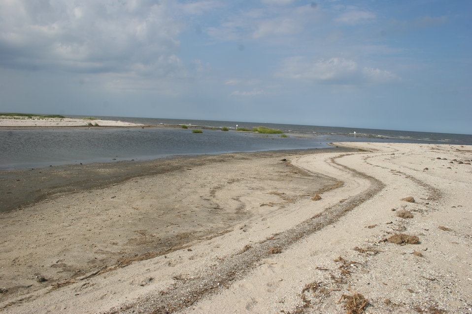 Beach at Prime Hook NWR