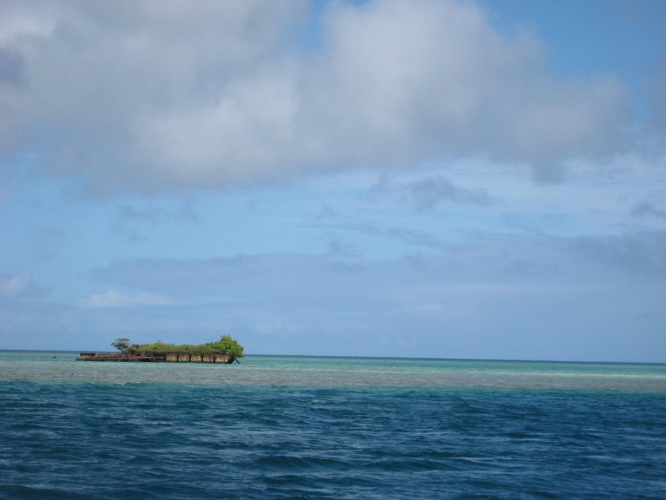 A deserted barge left on the reef which has become a vegetated islet.
