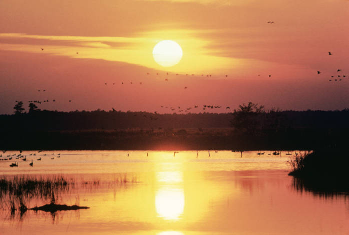 Photo of the Week: Sunset at Blackwater National Wildlife Refuge   Cambridge, Maryland