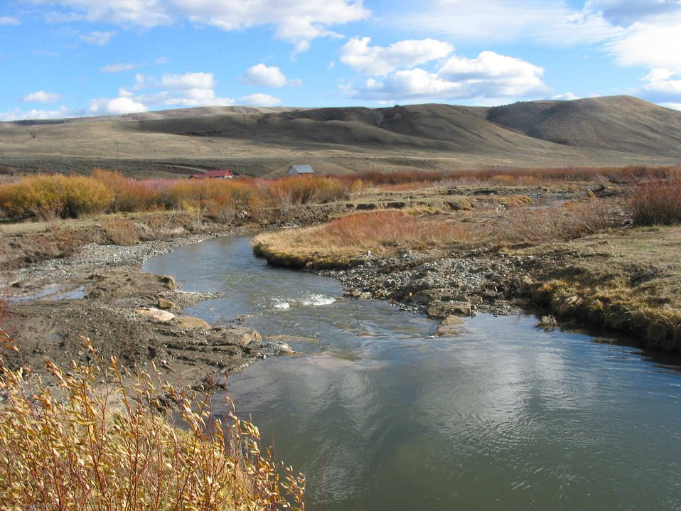 Savory Creek in Wyoming