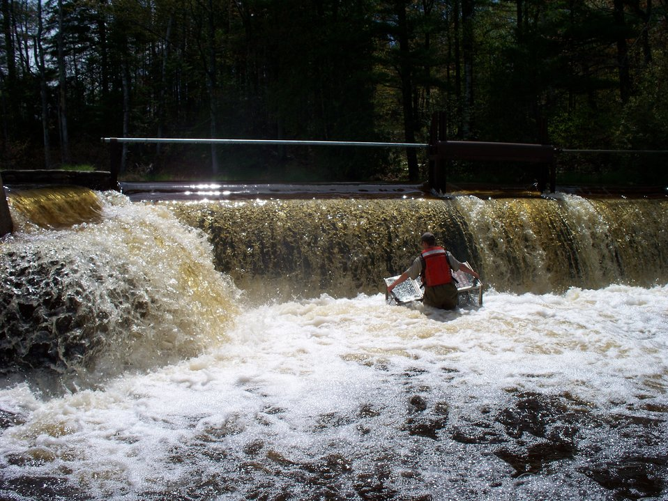 Deploying a Portable Assessment Trap at the Rock River, Wisconsin.