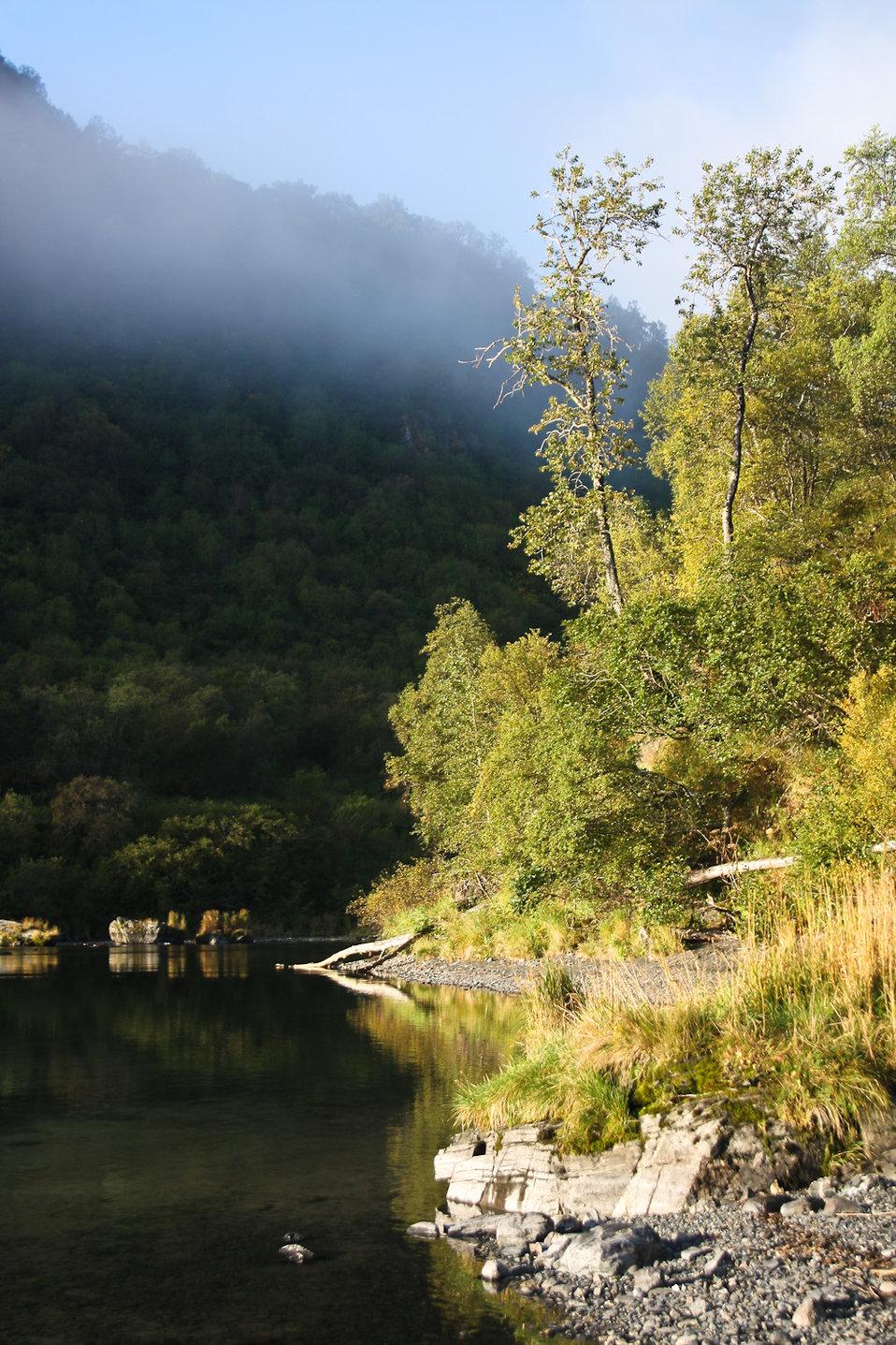 Uganik Lake Shoreline