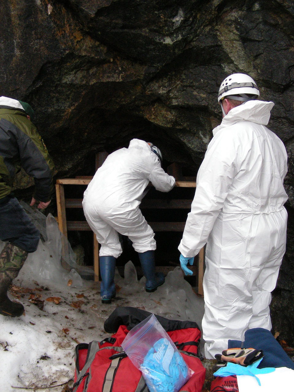 Biologists entering the mine