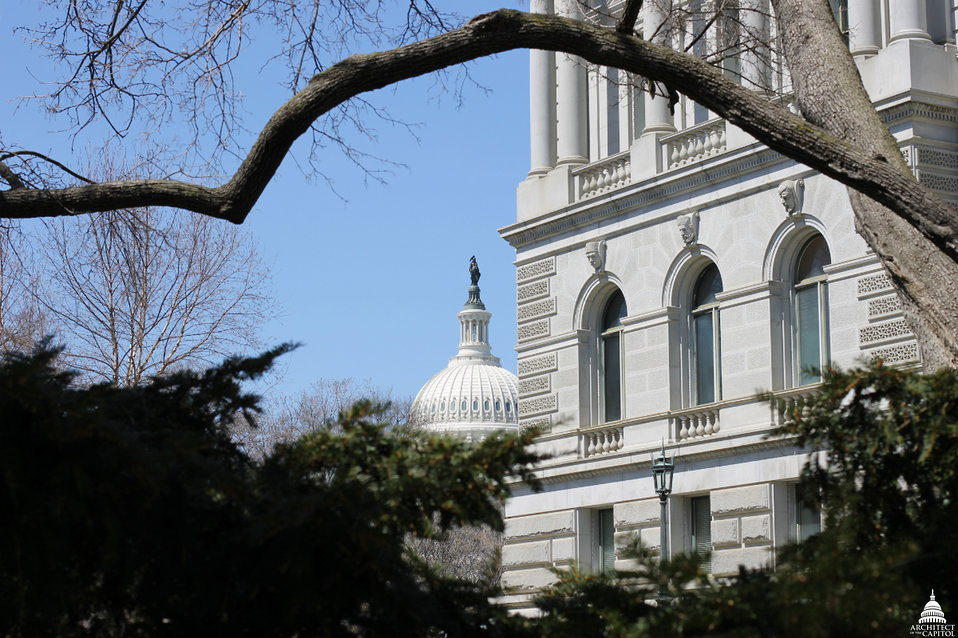 Capitol viewed from grounds of the Library of Congress Jefferson Building