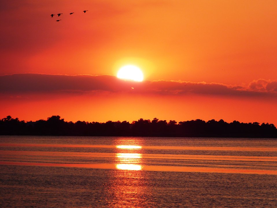 Sunset over Lake Mattamuskeet with ducks in the sky