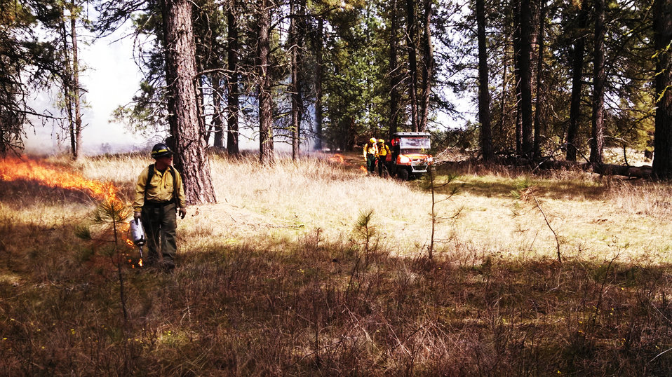 40-acre Prescribed Burn