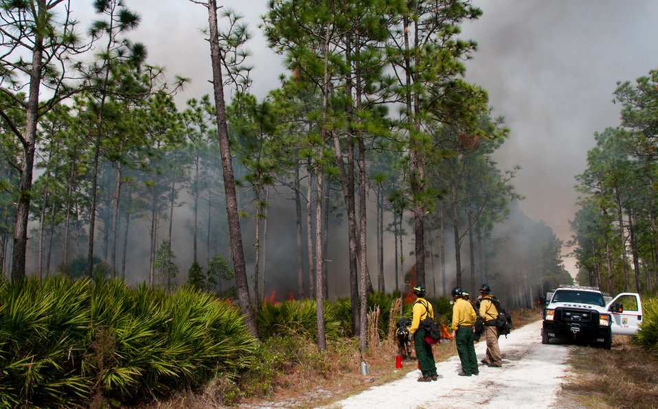 Lake Woodruff Volusia 5 Prescribed Fire Febuary 2014