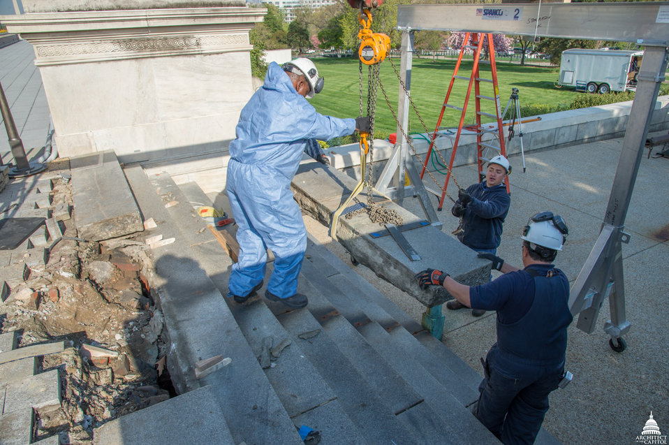 Olmsted Terrace Preservation