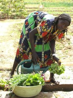 A Sudanese Refugee Cleans Her Produce