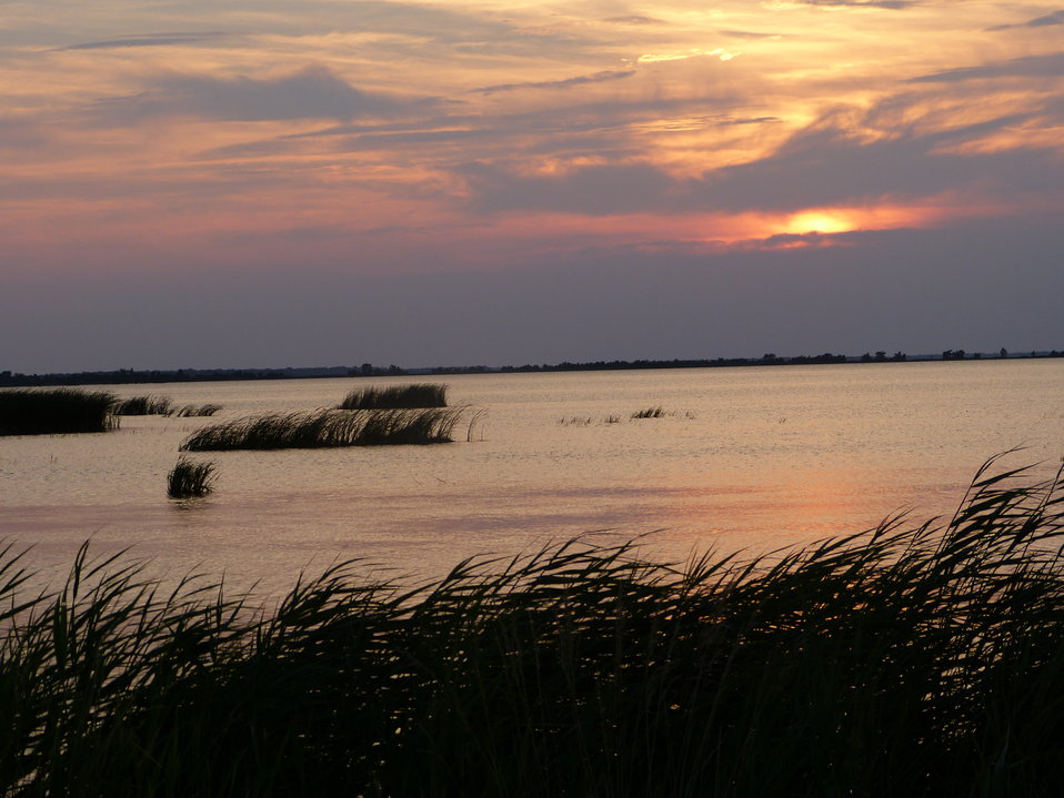 Sunset at Lake Mattamuskeet