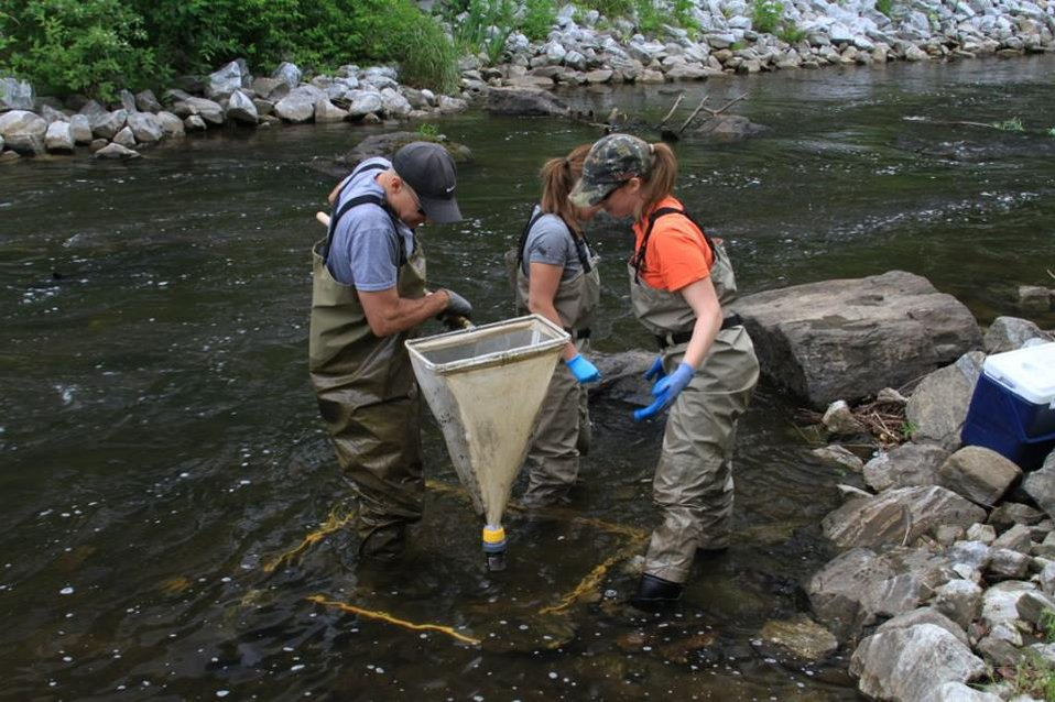June 2012, Sampling for macroinvertebrates
