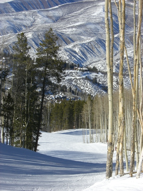 Uploaded by request of Linda Curhan      Taken at Beaver Creek, Colorado   Skiing in  the mountains of Colorado is an amazing way to be