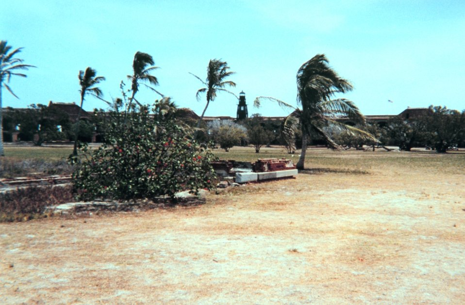 The lighthouse as seen from the far end of the parade ground at Fort Jefferson.  The configuration of the palm trees is testimony to the force and continuity of  the trade winds in this area.