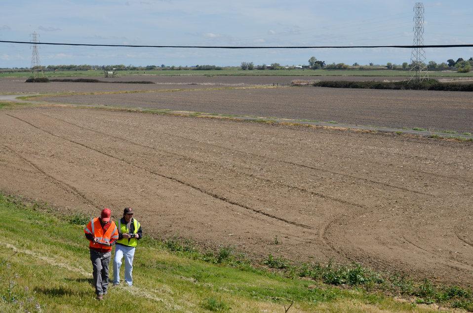 Inspecting a Sacramento River levee