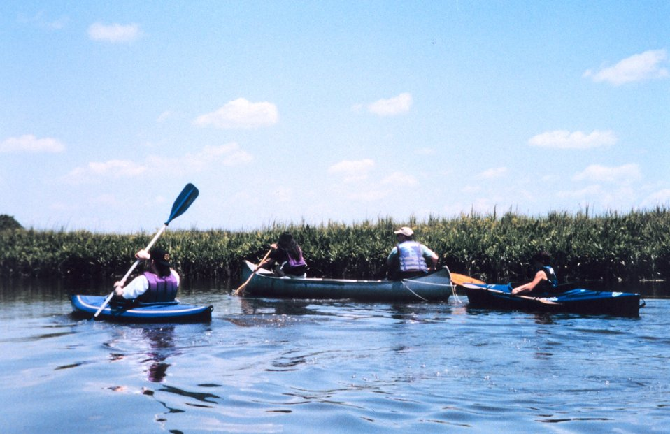 National Oceanographic Data Center employees at sea -  kayaking along the Patuxent River.