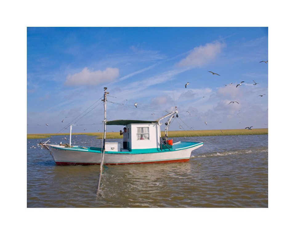 Fishing boat, Louisiana