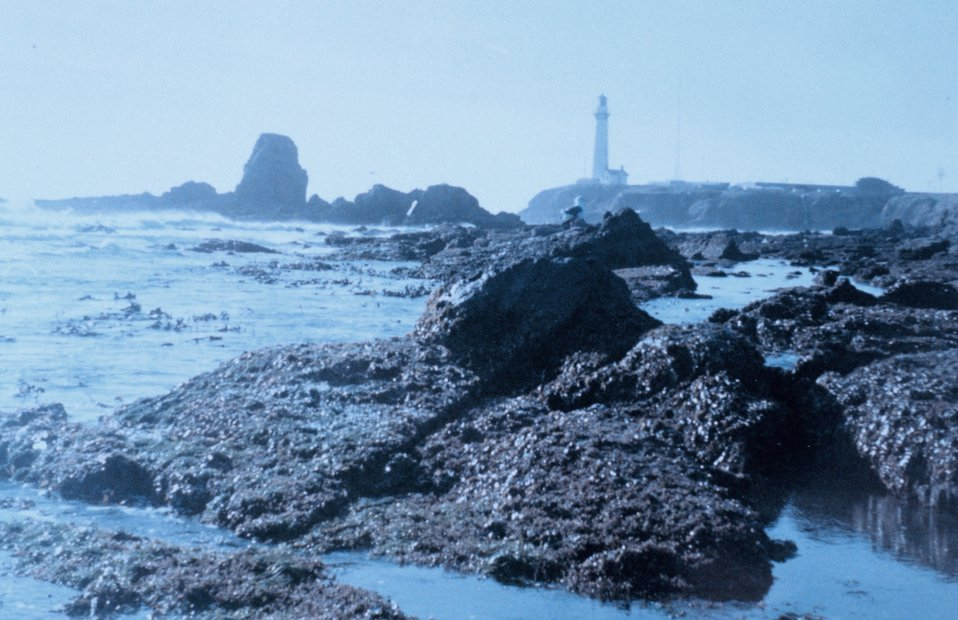 Pigeon Point Lighthouse as seen from the south at low tide on a misty day.