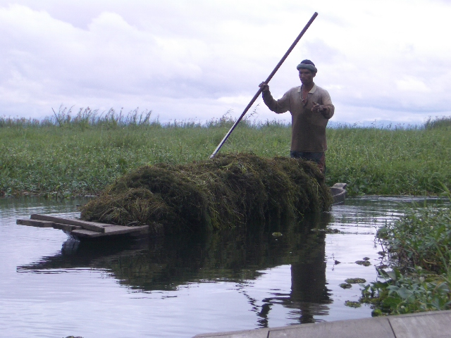 Uploaded by request of Snehasis Das