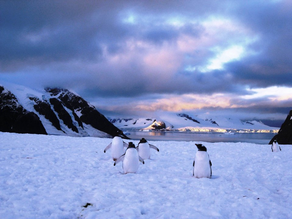 Uploaded by request of Jeanne Litwin