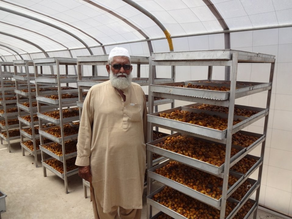 Dates Dost Program: Azam Dates Farm, Khairpur, is benefitting from USAID's assistance to increase the economic value of dates grown on 13 acres of land, owned and cultivated by Sualeh Bhutto. The partner SME (small and medium enterprise) has been recentl