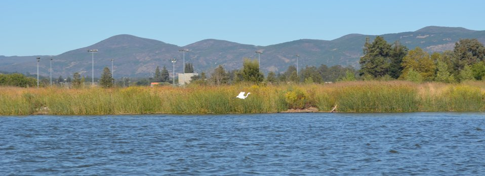Napa flood risk reduction efforts