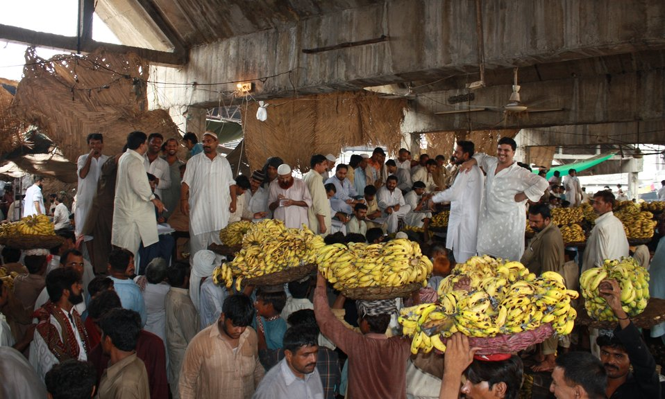 USAID Firms Project's Agriculture Marketing Reforms - 2